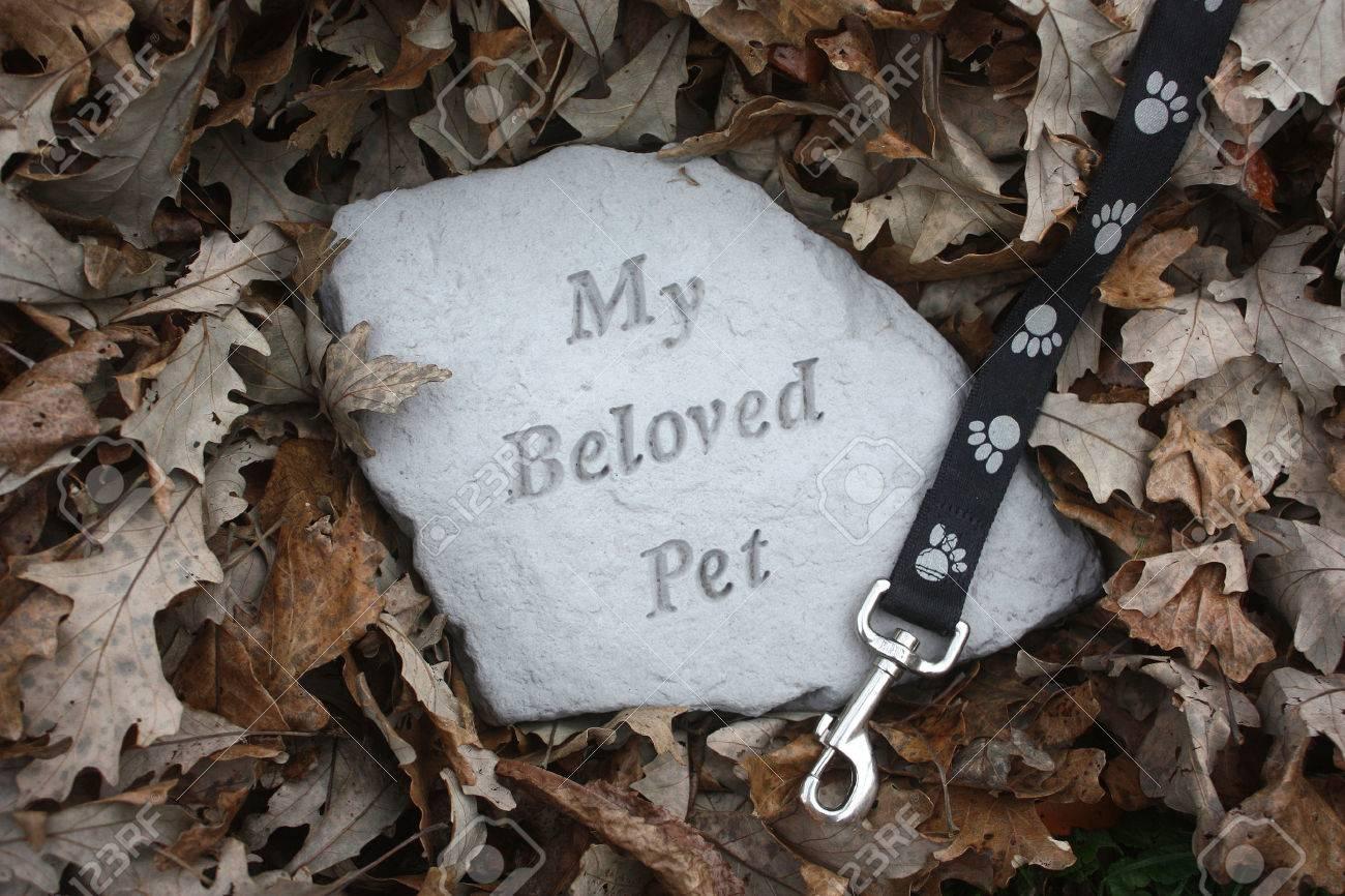 68567071-loss-of-a-pet-memorial-in-fall-leaves