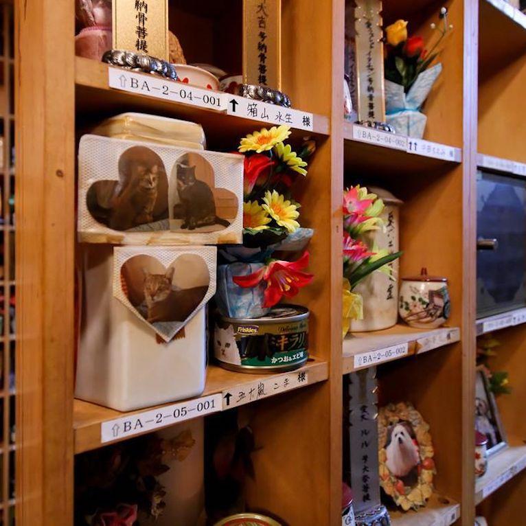 shelf-example_orig